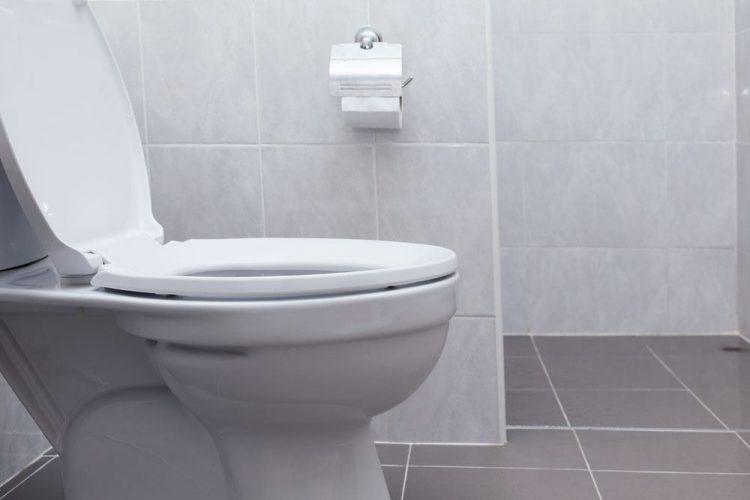 Best Toilet Auger